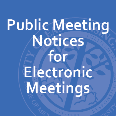 electronic meetings2